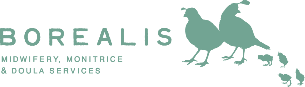 Borealis_logo_558